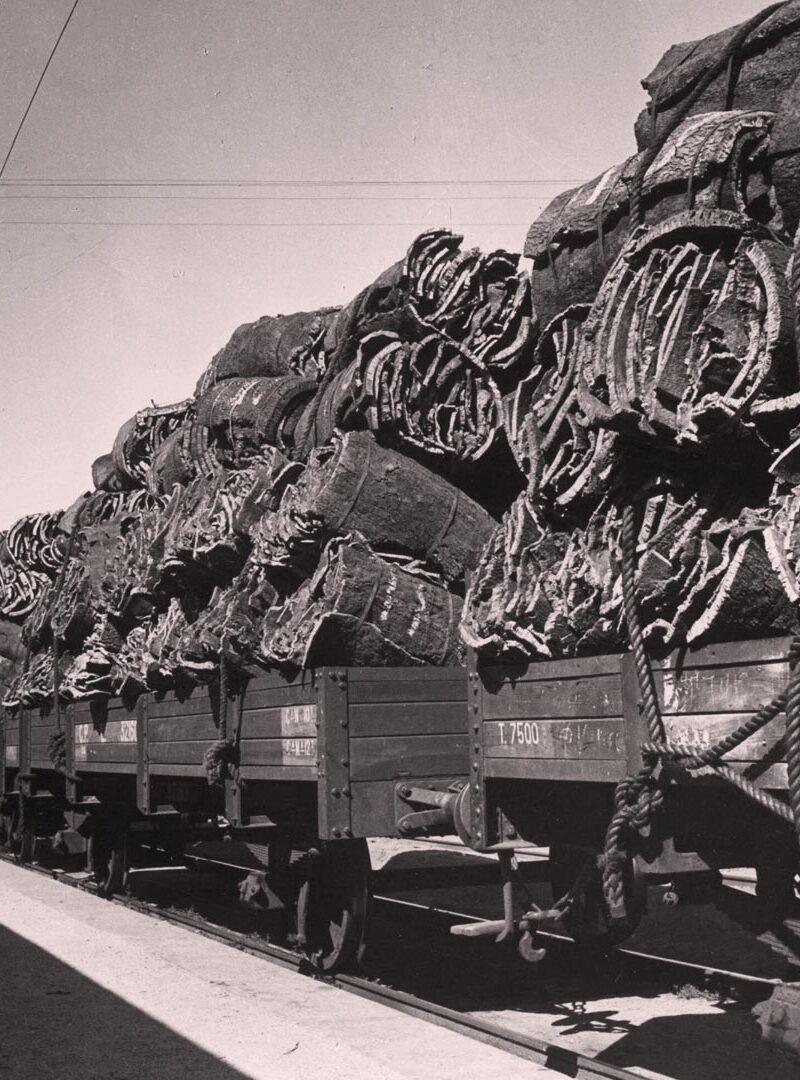 DAM_Cork_Train_chair